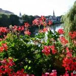 lugoj-flori-podul-de-fier