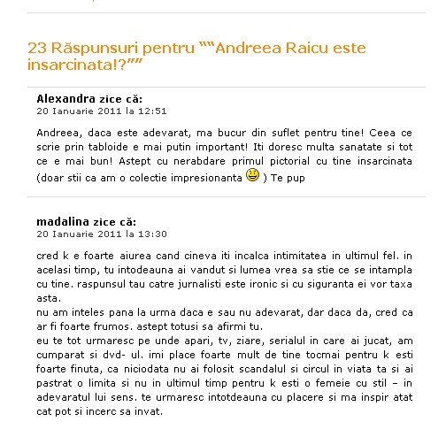 Andreea Raicu blog