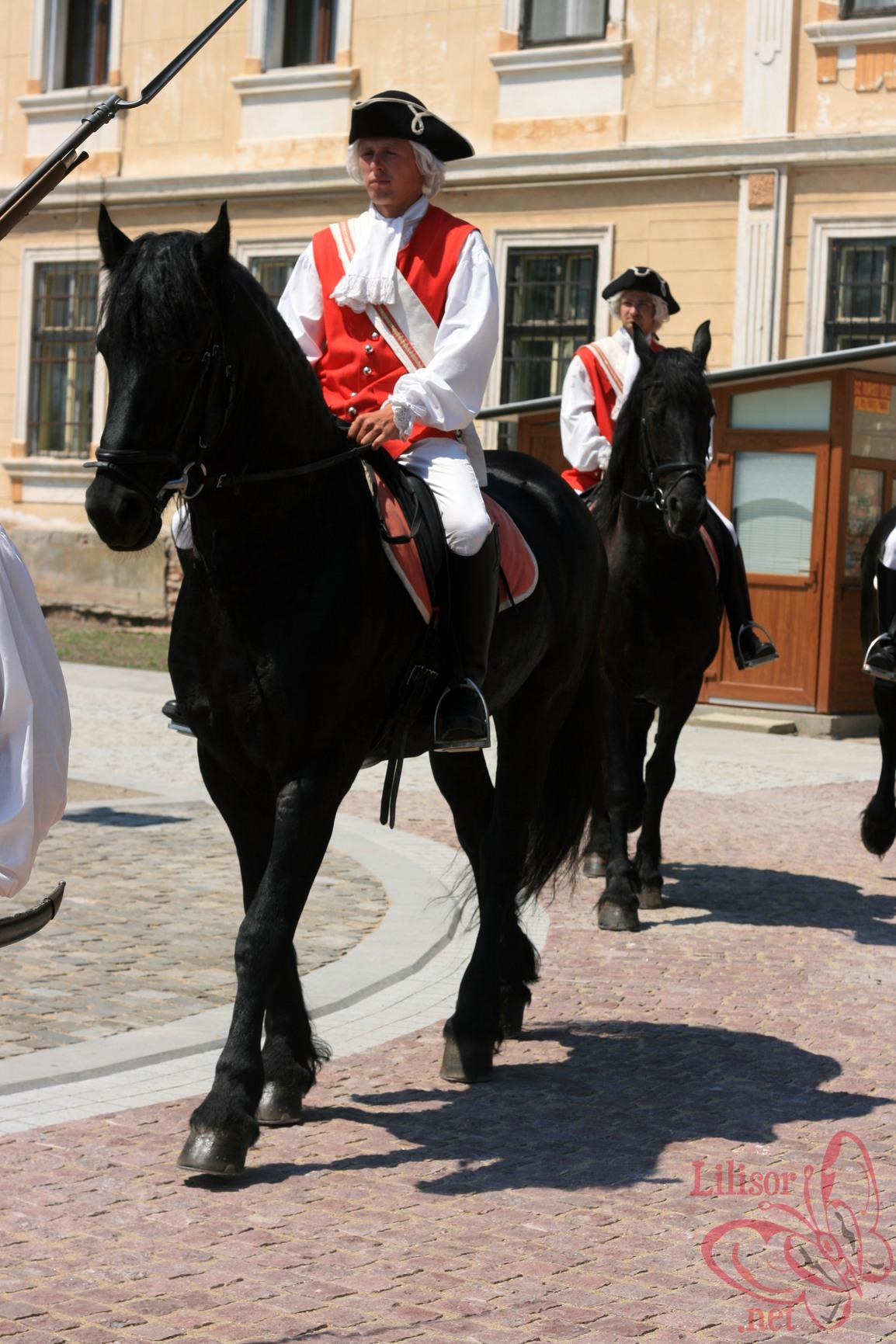 Calul Frizian din Alba Iulia