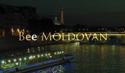 Bee Moldovan