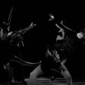 dans-teatru-fito2014