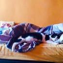 mitsi-dormind
