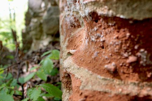piatra-soimului-pestis7