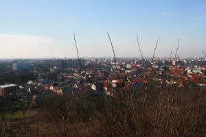 Oradea from Ciuperca