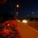 lugoj-nocturna