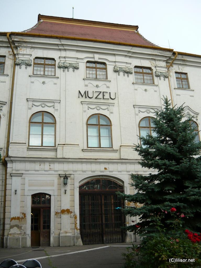 Palatul Baroc - Fostul Muzeu al Tarii Crisurilor Oradea
