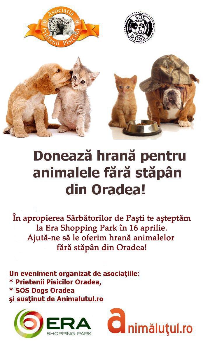 doneaza hrana pentru animalele fara stapan