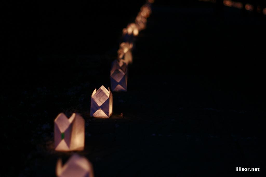 festivalul-luminii-oradea_74