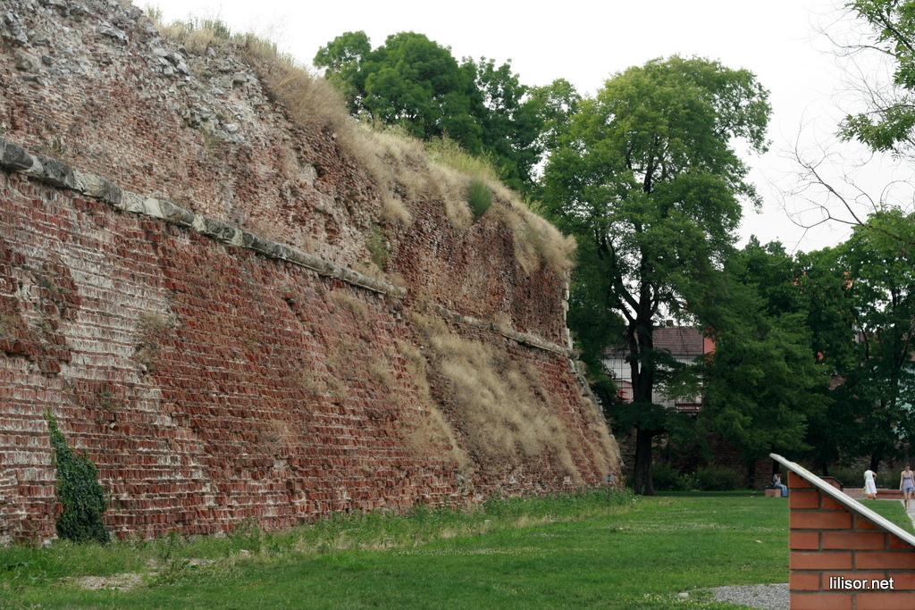 zidul cetatii oradea
