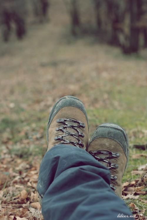 bocanci scarpa
