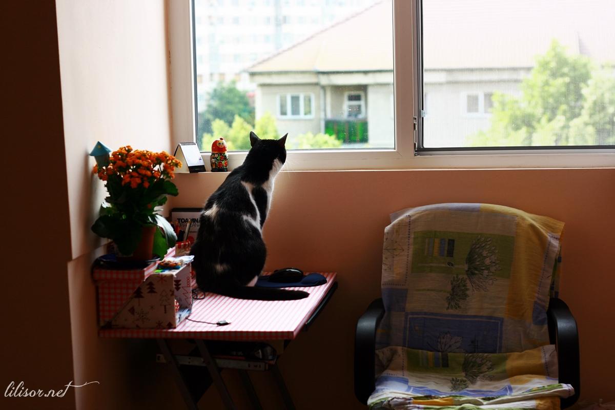 birou in balcon