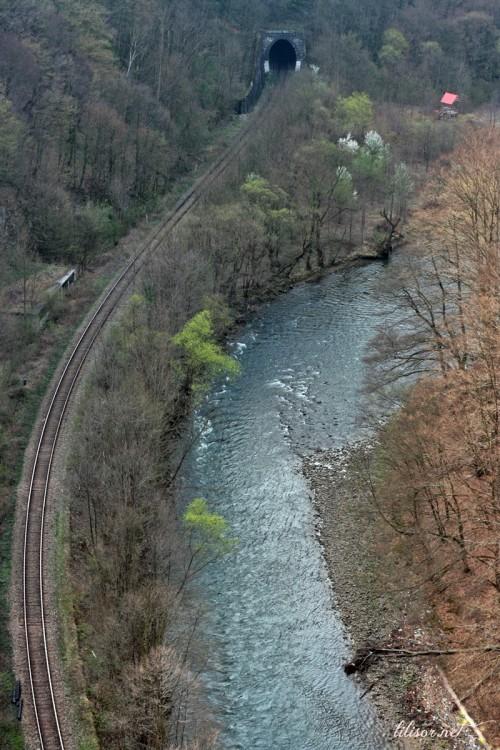 calea-ferata-vadul-crisului